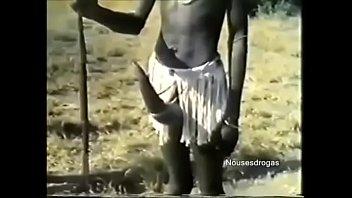 Pene africano