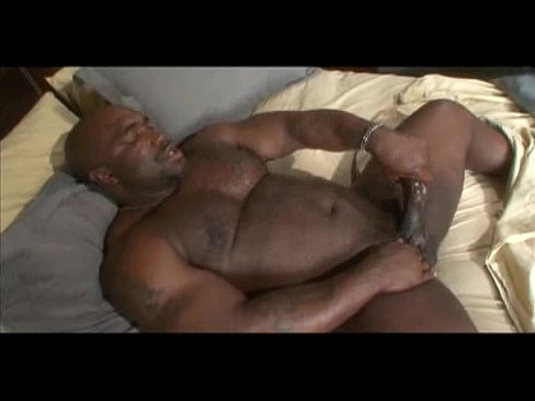Solo bear man cock jerking