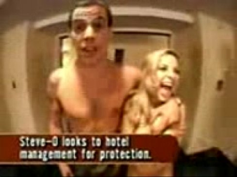 Have removed Nude steve o pictures excellent variant