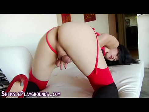 Asian ladyboy strokes rod